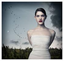 Enchanted by davidrabin