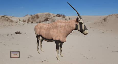 Oryx Painted2 by hairyskeleton