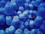 blue mushrooms by myimaginaryworld