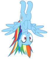 Rainbow hanging upside-down in Pinkie's closet by Tardifice