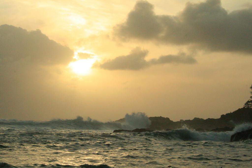 Sea Stock