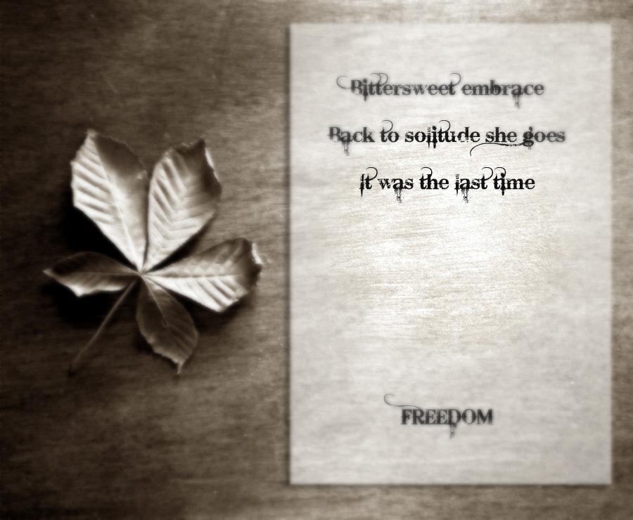 Haiku: Freedom by befanini