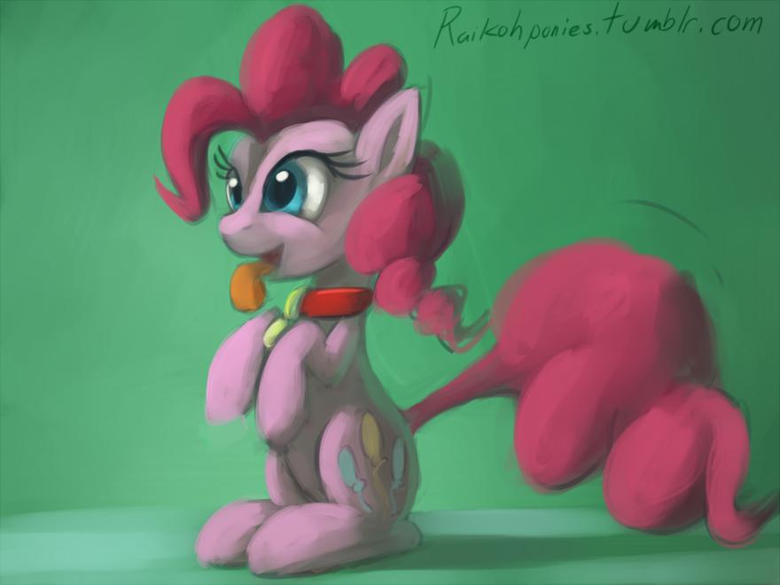 Pinkie Pie dog by Raikoh-illust