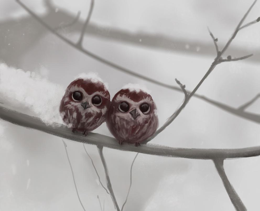 Little Owls by Raikoh-illust