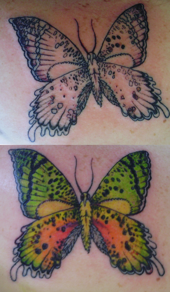 Butterfly Tattoo by