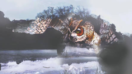 Forest owl.psd by Skyzouille