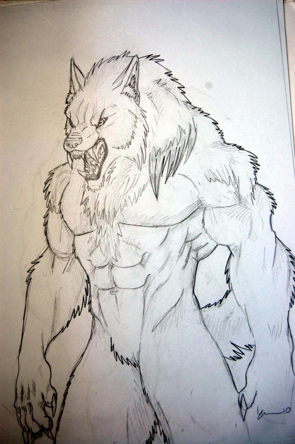 Evil wolf face drawings