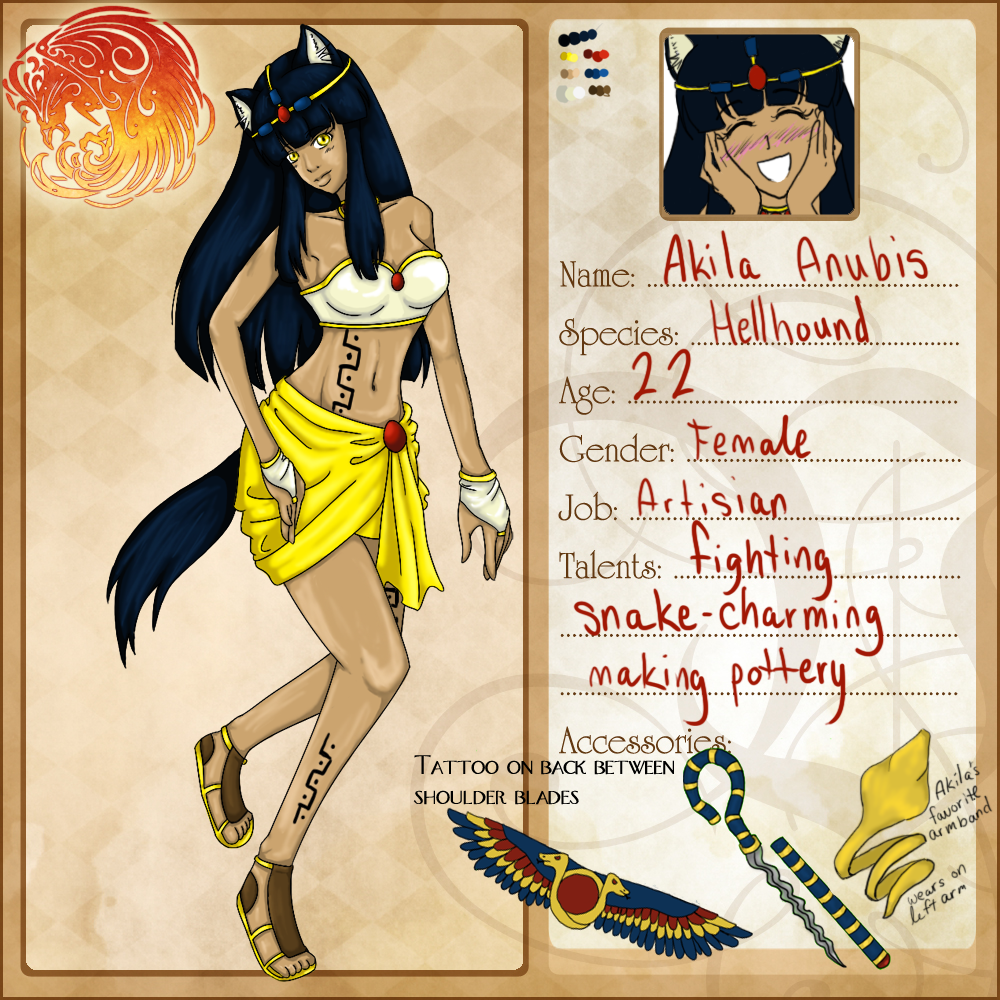 Akila - Voleros Application by DizDear