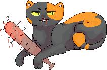 Bandit by foxgay