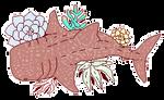 whale succulent shark by foxgay