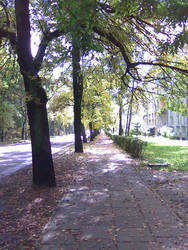Golden autumn in Sosnowiec by Chakat-Northspring