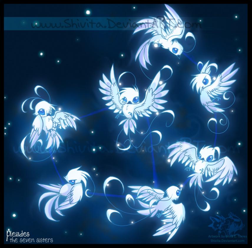 Cosmic Zoo Pleiades By Shivita On Deviantart