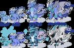 Dracket evolution line