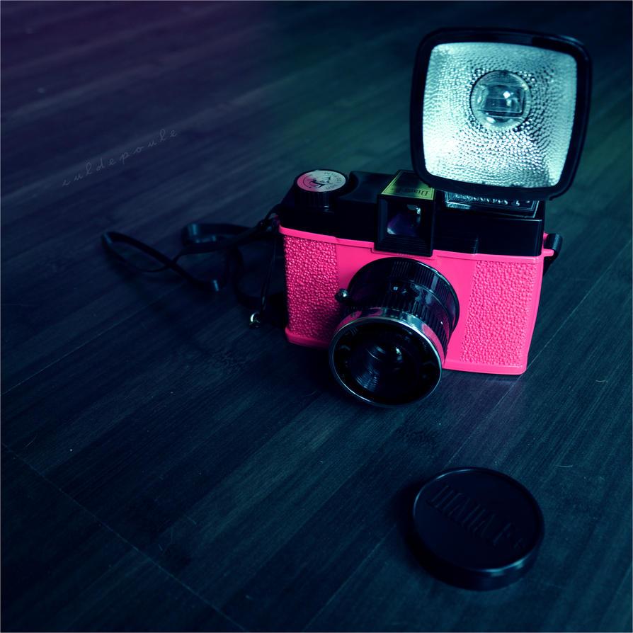 Mr Pink by culdepoule - bir foto�raf �ekilebilirmiyiz?