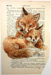 A Page on Fox Love