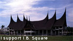 I Support I.B. Square Stamp by syths-cortex