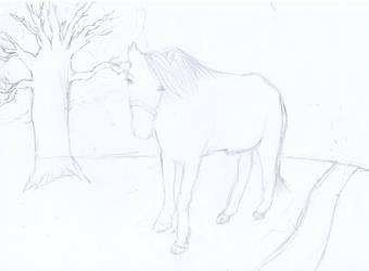 horse -wip- by mario0om