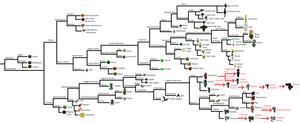 Minecraft Tree of Life