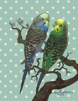 Commission Brian's Budgies