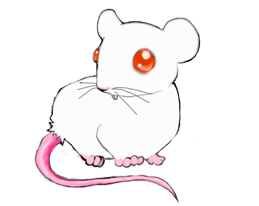 anime lab mouse by RibbonObsession on DeviantArt