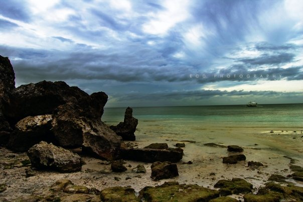 Photography - Beach by wolverick12