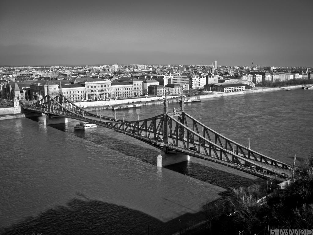 Liberty Bridge Budapest II by 5haman0id