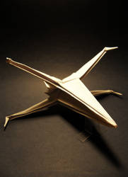 X-wing #2