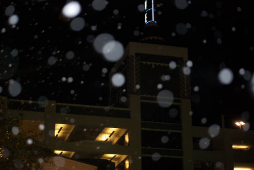 Snowing at the Grove