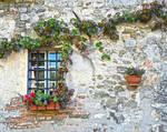 Window summer