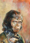 Zira Planet of The Apes book cover
