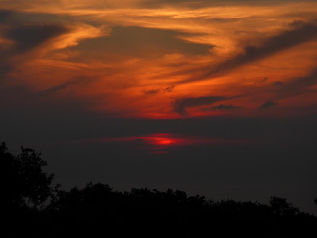 Sun's Wings by LetzRevolsky