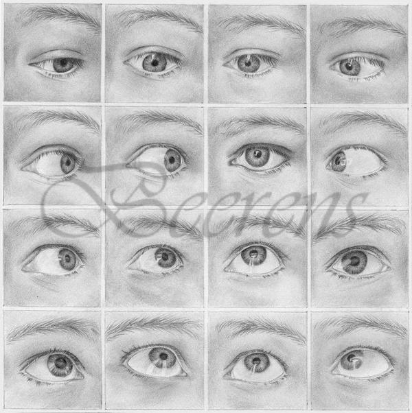 All eyes on you by cataclysm x on deviantart for Drawing eyebrows on paper
