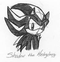 Pen Sketch-Shadow the Hedgehog by wandablazer