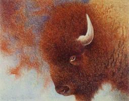 Red Buffalo by Cloverfish