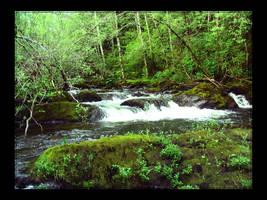 Little Falls by speedyfearless