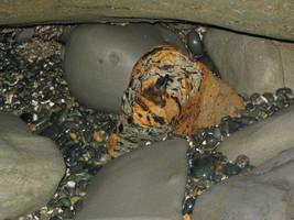 Tiger Stripe Rock by speedyfearless