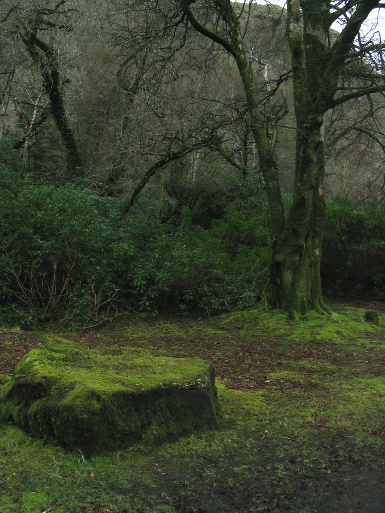 Connemara - Mossy Stone