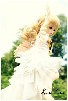 Shiroi Sora