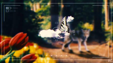 Forest Encounter by MrDanSLite