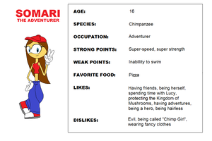 Somari Reborn - Somari the Adventurer