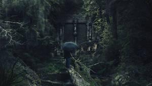 Secret Forest by FantasyArt0102