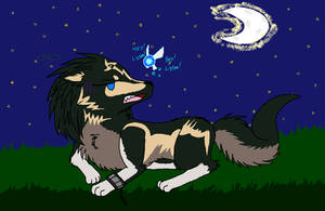 Wolf Link and Navi -GIFT-