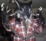 werewolf ID 2009 by aichan25