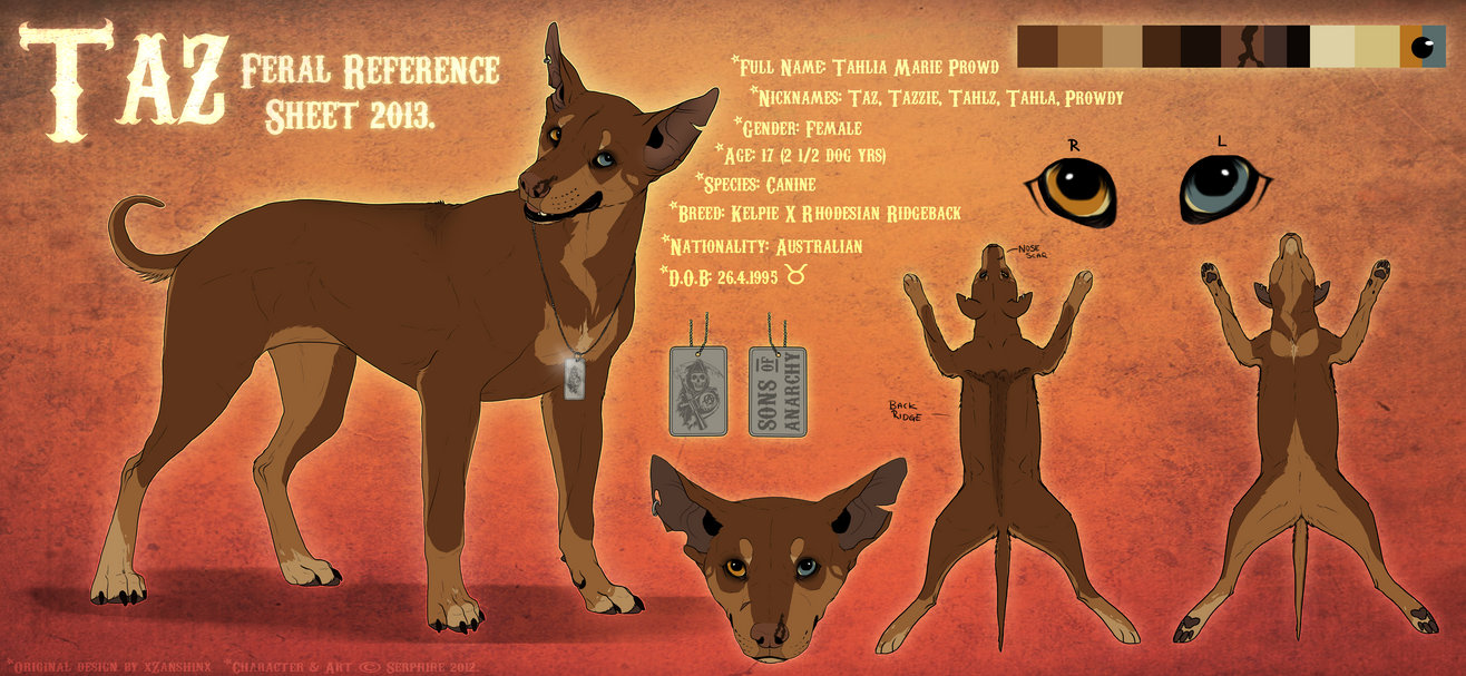 Fursona Feral Reference 2013. by Serphire