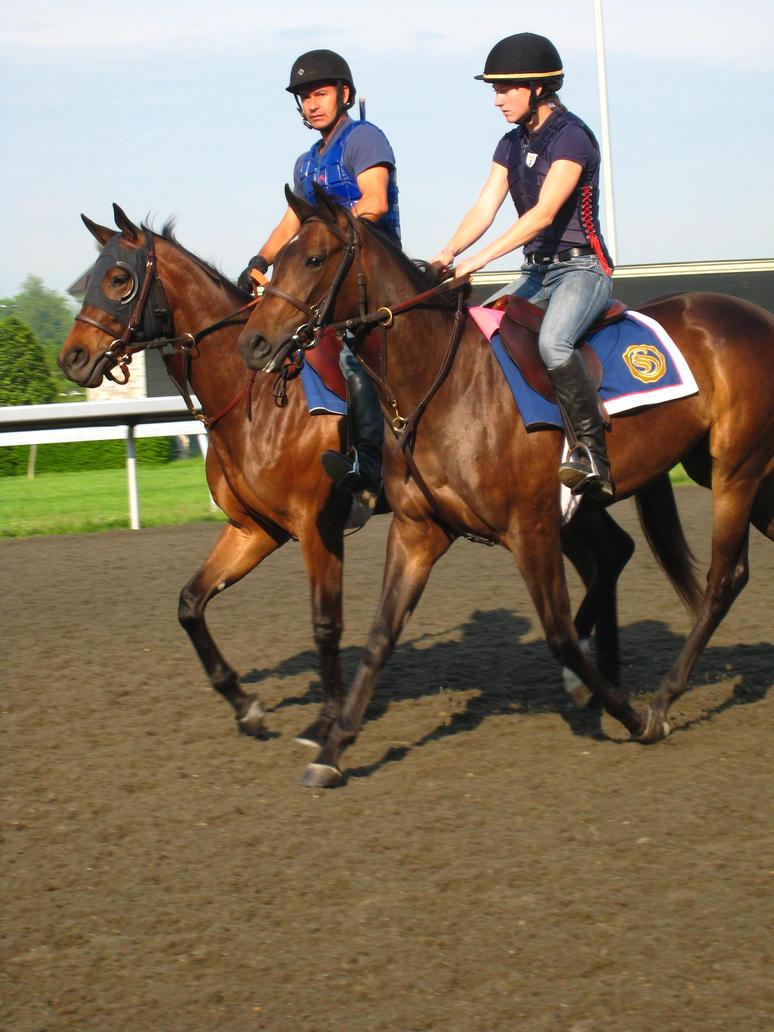 Training Horses by shinigamisgem