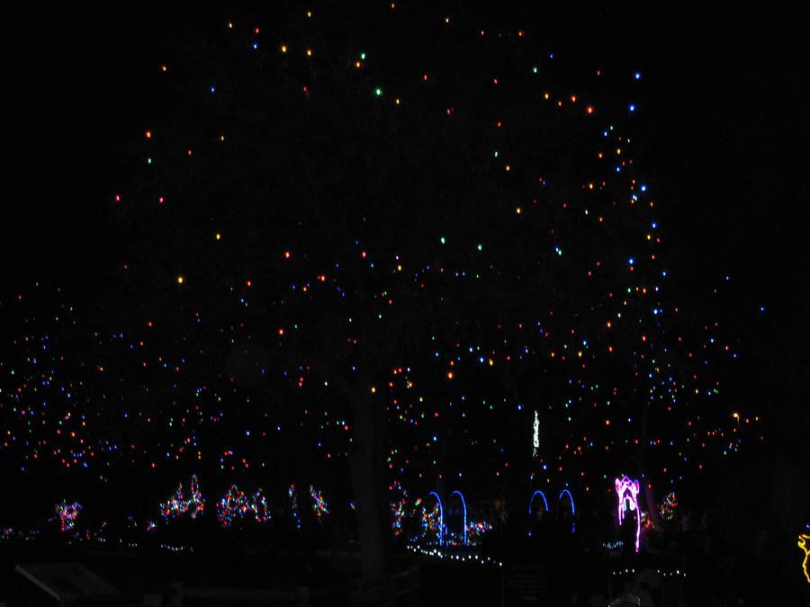 Sparkling Night by shinigamisgem