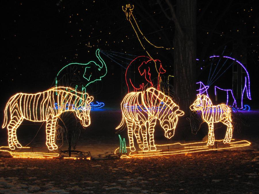 Animal Lights by shinigamisgem