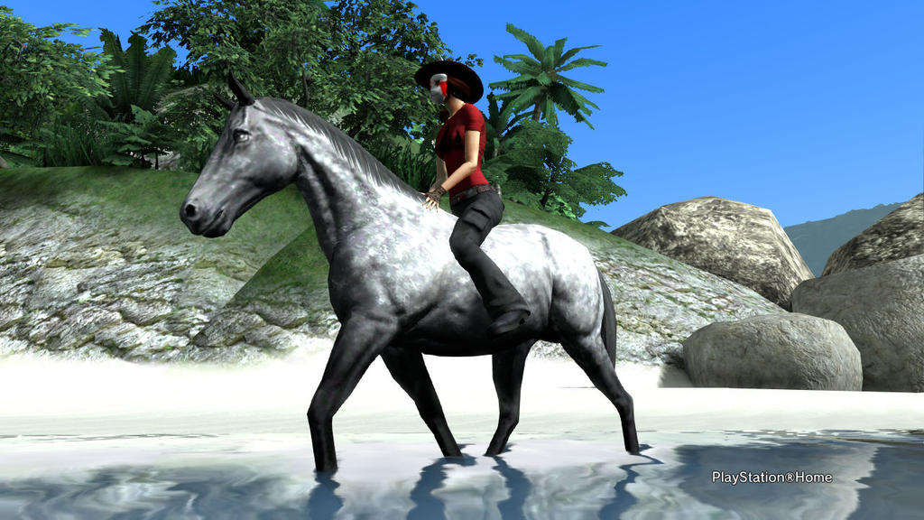 PSN Bareback Riding by shinigamisgem