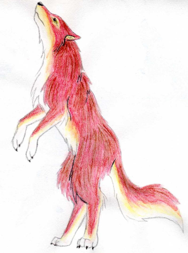 red wolf by fantomodrako on deviantart