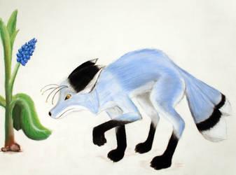 Blue Fox by FennecusKitsune